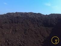 Чернозем земля плодородная