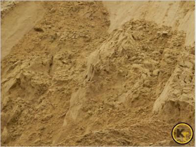 Песок речной мелкий